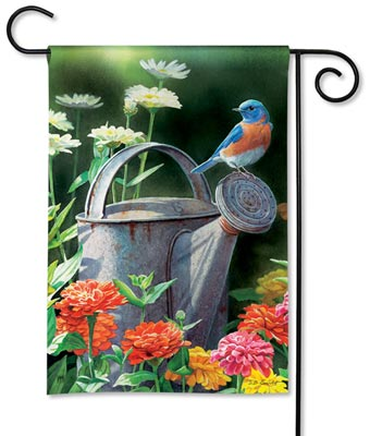 31126 Watering Can