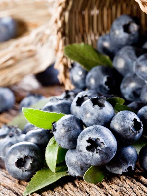 1094_10-Little-Known-Benefits-Of-Blueberries-For-Skin-Hair-And-Health_122138665.jpg_1