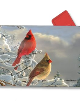 Winter Mailbox Covers